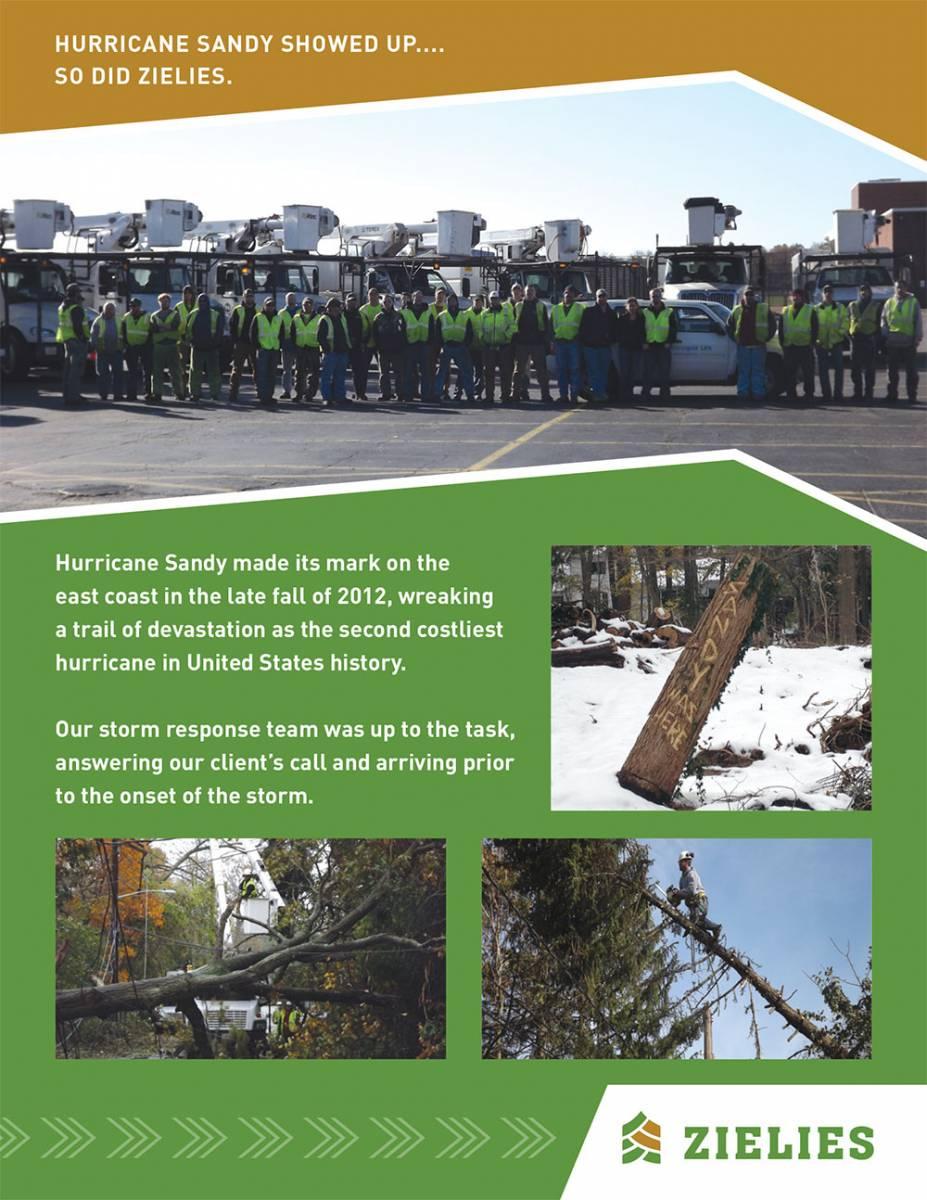 Hurricane Sandy Storm Restoration